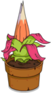 Fleur du siècle de Sumatra