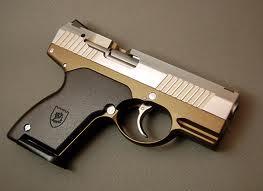 File:Hunter Pistol.jpg