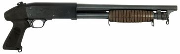 Ithaca 37 Stakeout