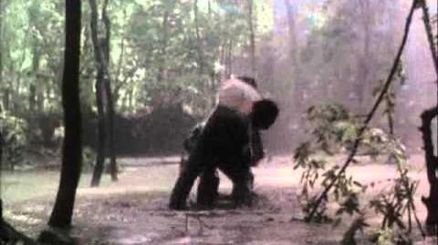 The Avenging Force Michael Dudikoff vs Masked Murderer