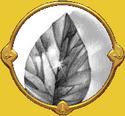 Première locus magicalicus de Connwaer