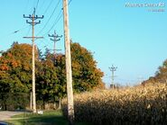 http://home.earthlink.net/~homefryes/utility_poles/utility_poles_oh-01_2003