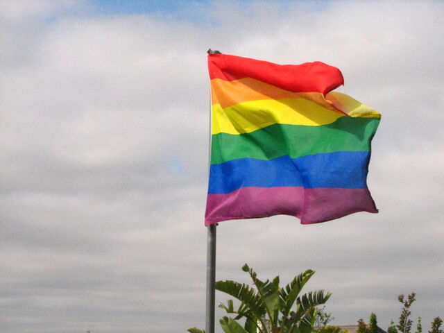 File:Rainbow flag flapping in the wind.jpg