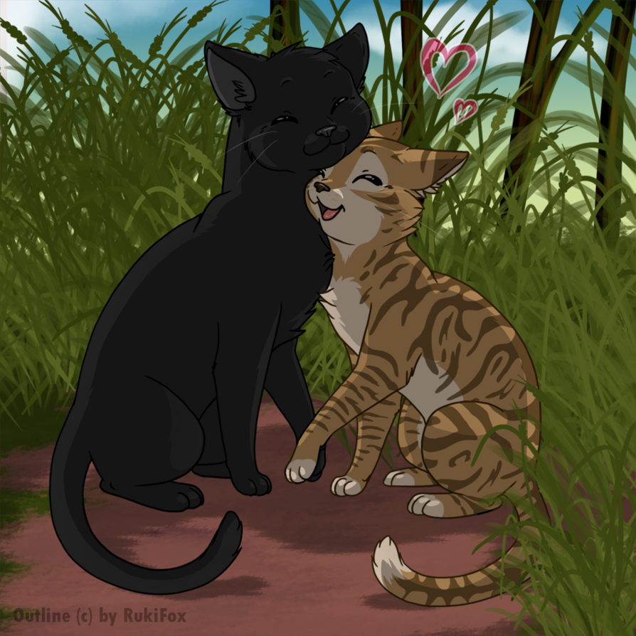 Warriors A Vision Of Shadows Raging Storm: Image - Leafpool-and-Crowfeather-6.png