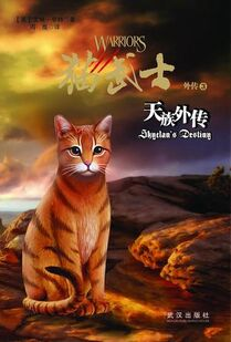 Edition chinoise SkyClan's Destiny