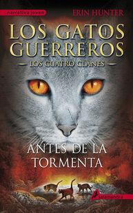 Version espagnole Avant la tempête