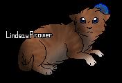 Violette (chaton)