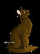 Acorn Fur line