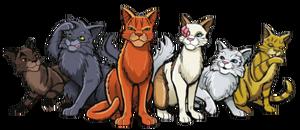 Chats du Clan du Tonnerre