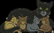Mousse et ses petits