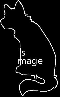Sans image