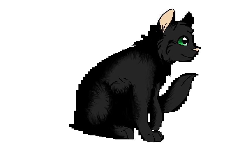 Dark Whisker