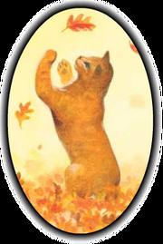 Poil d'Écureuil