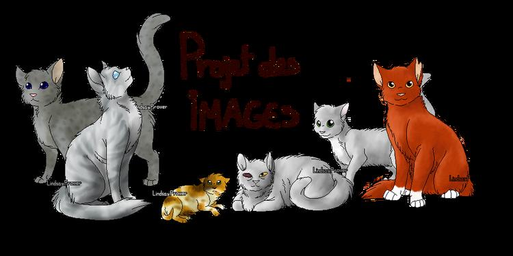 Projet des images