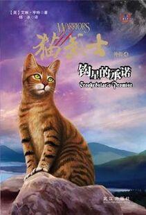 Edition chinoise La promesse de l'Élu
