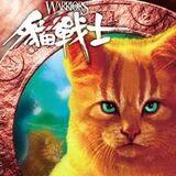 Chinese-Cat1