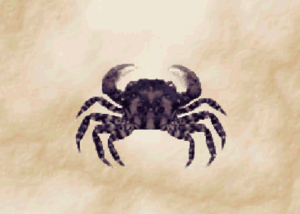 SandCrab