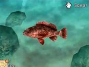 Sting Fish 2