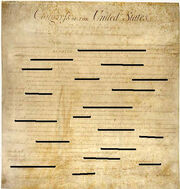 Happy Constitution (Redacted) Day, 2008