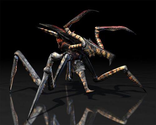 Warrior Bug film animation