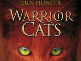 Warrior Cats - In die Wildnis