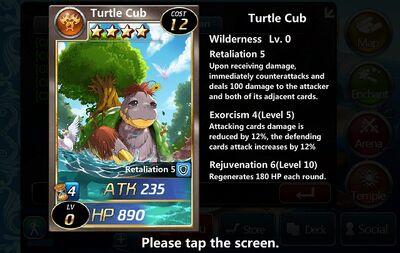 Turtle Cub
