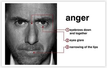 Facial action coding system test