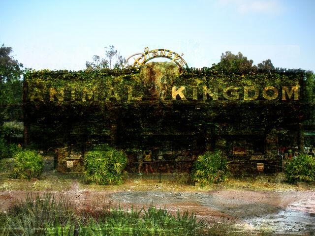 File:Animal Kingdom.jpg