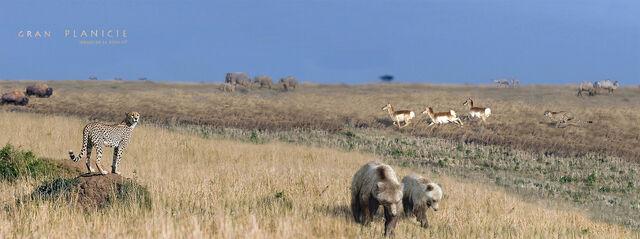 File:Rewilding north america plains by serchio25.jpg