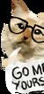 Cat-flyer