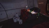 Lis2-Freecam-jacobtent-duffelandtp
