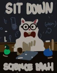 Warren-gato-meme
