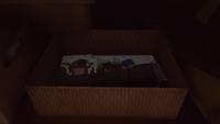 Reynolds Household Bedroom - Old Box