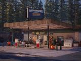 Bear Station