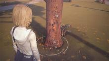 Moc-tree-ep1