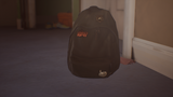 LiS2-seans backpack original