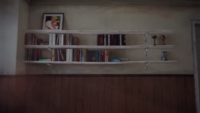Madsenhouse2-books