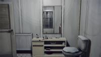 Madsenbathroom-lis-mirror