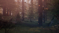 S2E4SC1 Mount Rainier National Park 02