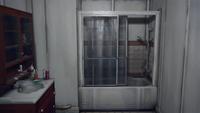 Madsenbathroom-lis-shower