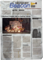 Kate Marsh Newspaper Suicide Dark Room cut