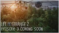 Life is Strange 2 - Episode 3 Coming Soon