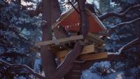 LiS2 Treehouse 01