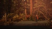 Drifters' Camp Lake (Day) 01