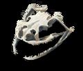 E4 Souvenir 3 - Snake Skull