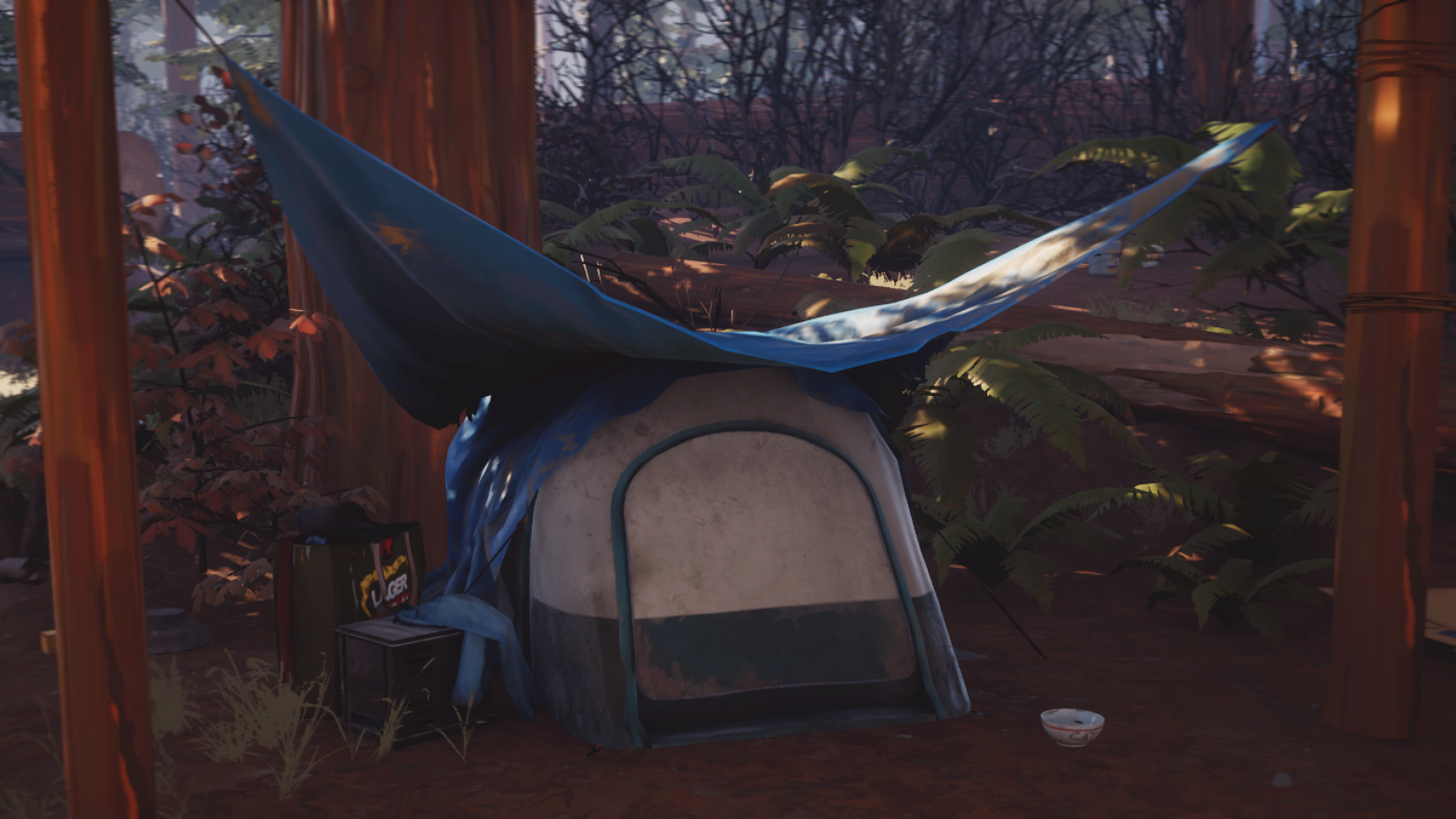Lis2-Freecam-pennytent-outside-infobox
