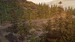 Floresta Queimada - 4