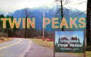 Twin peaks town.2