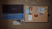 Sean's Room - Bulletin Board