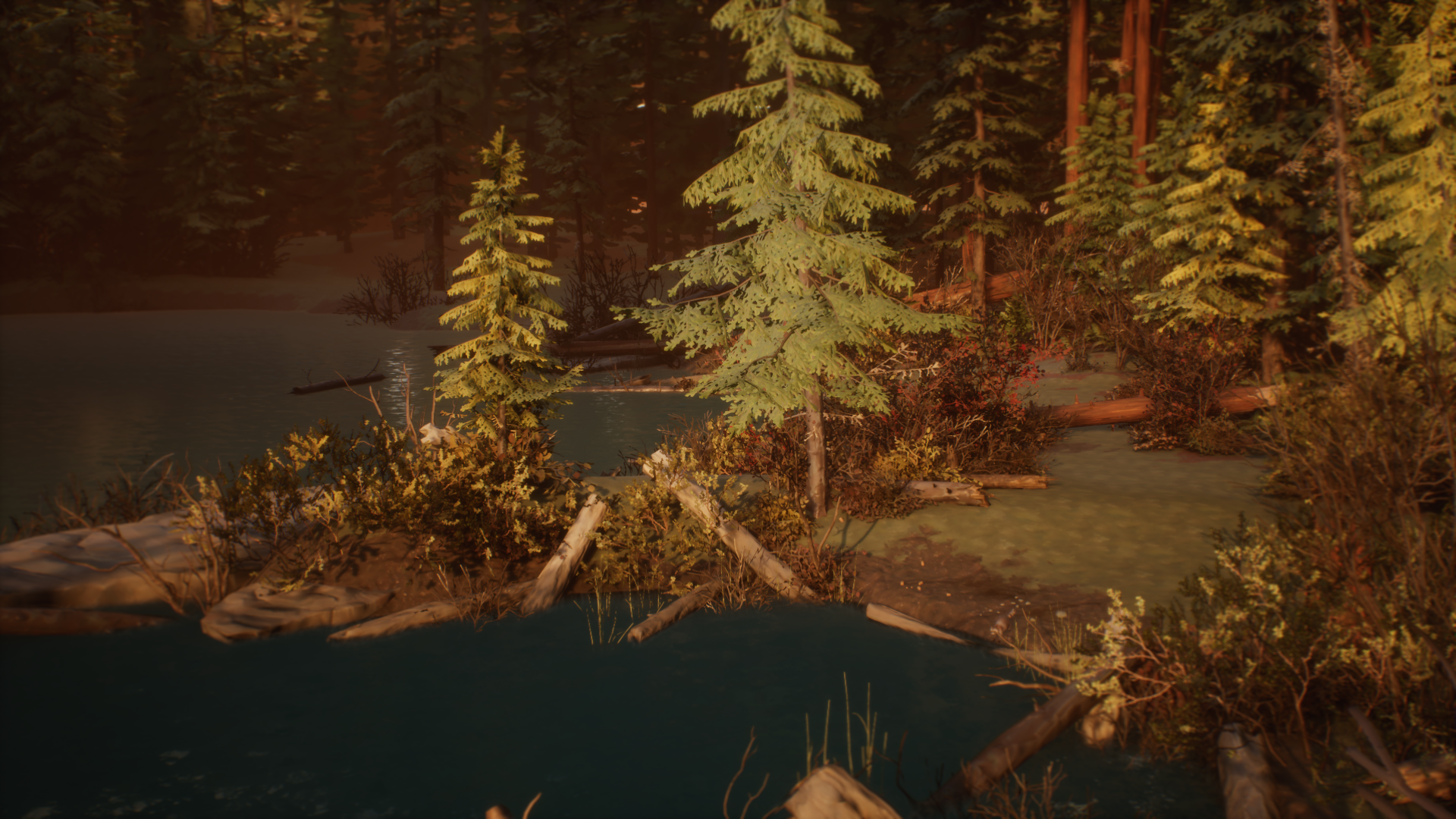 Drifter Camp Lake - Main Daytime